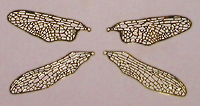 Small Dragonfly Wings Filigree (1 set)