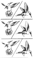 Rub 'N' Etch Hummingbirds